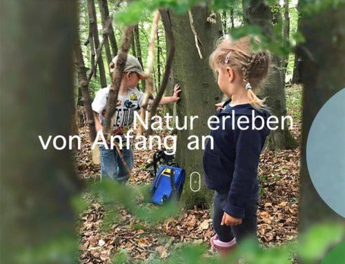 Webdesign – DeinWaldkind Naturpädagogik – Mogendorf